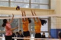 五校女排聯賽
