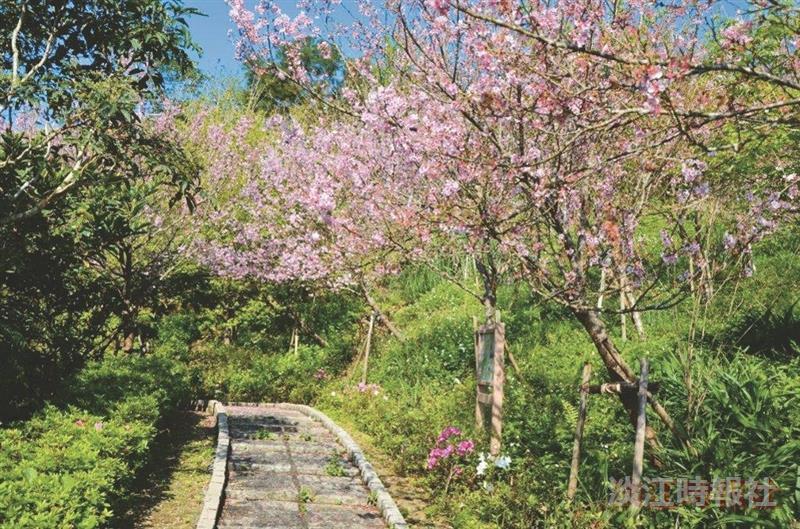 蘭陽校園步道