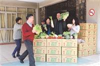 力挺低碳飲食 彩虹蔬菜熱賣