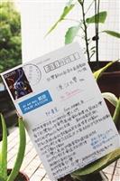 【筆耕逾甲子系列2】傳達公民參與