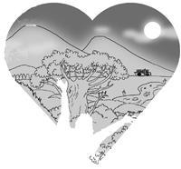 月下五虎崗 新鮮如蜜的空氣 是淡江寶貴的資產