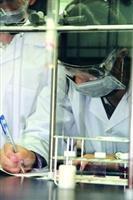 化學系於寒假期間舉辦國、高中科學營,帶學生從動手做實驗開始,學習理化知識,體驗大學生活。(攝影�嘉翔)