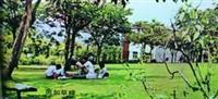 民國60年代學生在綠草如茵的草地上,自在愜意的閱讀。