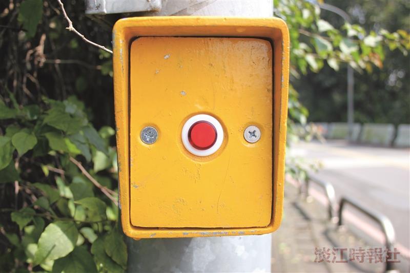 號誌啟動鈕(攝影/蔡昀儒)