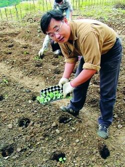蘭陽校園主任室組員李建宗正開心地栽種綠花椰菜。(圖�蘭陽校園提供)