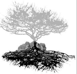 新天地•老樹•思想起  典藏校園共同回憶 建築系溫馨葬樹
