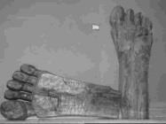蕭一用木頭雕刻的兩隻腳丫,命名為<大道>(
