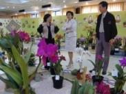 蘭展第一天,行政副校長張家宜(中)就前往賞花,對於眼前這盆入選的嘉德麗雅蘭,特別駐足欣賞。(記者邱啟原攝)