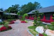中國式的覺軒花園,曾是電視劇「風雲」的外景場地。